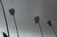 Video captures small tornado sweeping through Los Angeles neighbourhood
