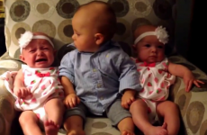 Toddler meets identical twins for the first time and he is adorably confused