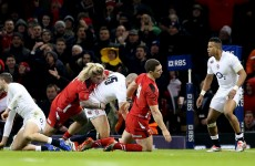 Wales cleared of wrongdoing after George North head injury controversy