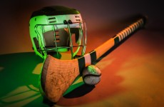 """""""You are only concerned when the hurley shortage happens': GAA urged to fight forest fungus"""