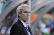 Ex-France coach Raymond Domenech says he's 'dreamed' of managing Ireland
