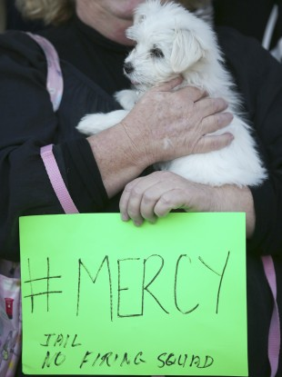 A woman holds a handwritten placard and a small dog as demonstrators gather at the Indonesian consulate in Sydney today.