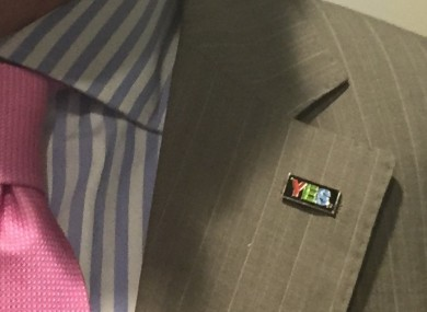 This small 'Yes' pin has been spotted on several Oireachtas members' lapels in recent days