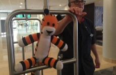 Airport staff took a little boy's lost teddy on a wonderful adventure of its own