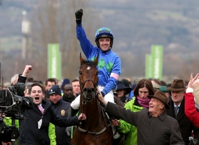 Hurricane Fly after winning the Champion Hurdle in 2013.
