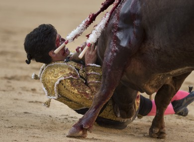 Lorenzo Sanchez gored by a bull in Madrid on 26 July