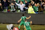 Here's how people are reacting to the Boys in Green defeating the world champions
