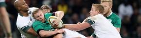 Schmidt's Ireland come up short as Springboks claim series victory