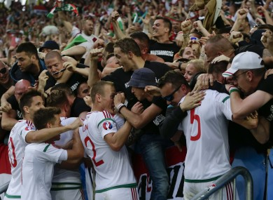 Hungarian players celebrate with fans after Hungary's Adam Szalai scored.