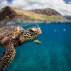 Photo and Caption by Brett Monroe Garner/2016 National Geographic Nature Photographer of the Year<span class=