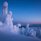 An other world on the top of this hill in Lapland. Snow ghosts are everywhere, we are only visitors. March 2016, Finland Feel free to visit my FB and website: https://www.facebook.com/PierreDestribatsPhoto www.pierredestribats.com<span class=