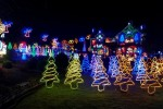 This Carlow family has gone all out with their Christmas lights for a good cause