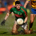 A newcomer to the Mayo rearguard, Harrison enjoyed a breakout campaign in 2016. The level of defensive prowess he displayed in the All-Ireland finals was particularly striking.<span class=