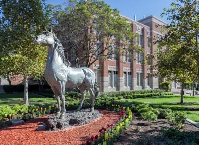 The USC campus.