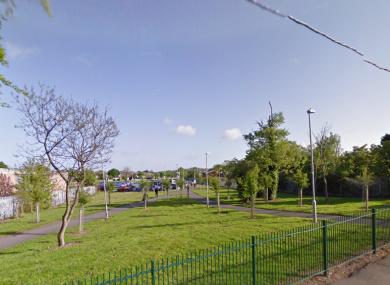 The green area surrounding Shankill Dart Station.