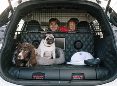 paws everything nissan has created the ultimate car for dog lovers. Black Bedroom Furniture Sets. Home Design Ideas