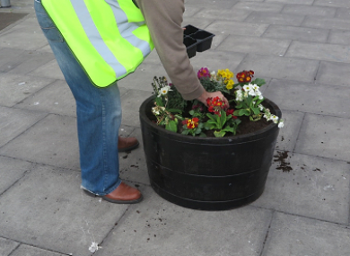 Planting flowers to beautify Dublin