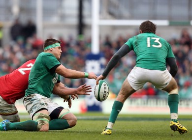 Adopted sons: CJ Stander and Jared Payne have been important players for Ireland.