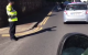 Gardaí in Sligo had to direct traffic around two swans and their babies in Sligo yesterday