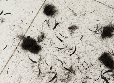 File photo: Hair cuttings on floor.