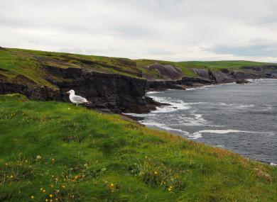 Kilkee cliffs in Clare.