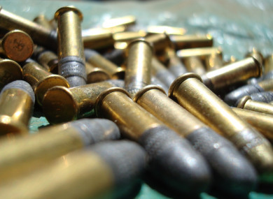 No DNA was found on the bullets but the man admitted hiding them.