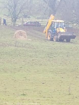 The scene where the horses were found.