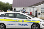 Two men arrested and �250,000 worth of drugs seized in garda gangland raids