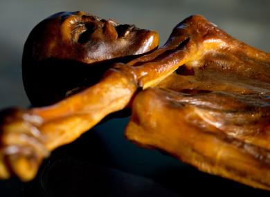 A replica of Oetzi's body on display in Munich.