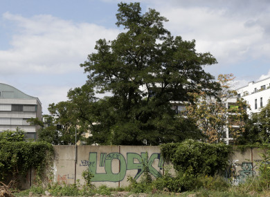 A newly discovered section hides behind the bushes near the headquarters of Germany's Federal Intelligence Service