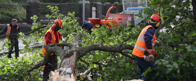 Workmen deal with a fallen tree on Finglas Road by Glasnevin Cemetary, Dublin