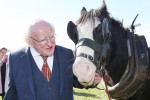 President Michael D Higgins at the Ploughing Championships last year.