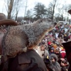 Good news: Punxsutawney Phil, the weather-predicting groundhog in Pennsylvania, didn't see his shadow on Wednesday - the US town's tradition has it that it means we'll have an early spring.<span class=