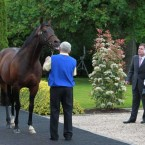 The Queen checks out Invincible Spirit as National Stud CEO John Osbourne shows her the facilities in Kildare. (Pic: Leon Farrell/Photocall Ireland)