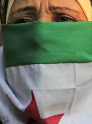 A Syrian Protester covers her face with a Syrian flag as she attends an anti-Syrian regime protest in front of the Arab league headquarters in Cairo, Egypt.