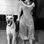 Elizabeth Taylor goes for a walk with her pet dog