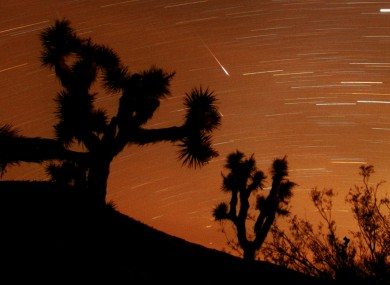Several Leonids meteors are seen streaking through the sky over Joshua Tree National Park, California USA.