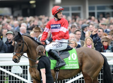 Zarakandar: chance to set out Champion Hurdle credentials this afternoon.