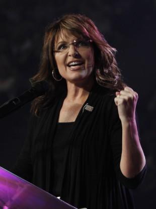 Sarah Palin in 2011 (File photo)