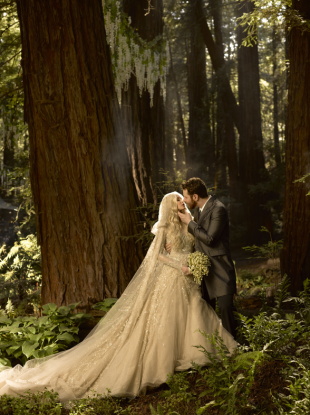 The bride and groom in the giant redwood forest where construction took place.