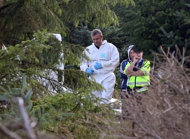 Gardai and members of the technical bureau pictured at the scene where human remains were discovered on Kilakee Mountain.