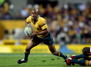 Gregan playing for the Wallabies in 2006.