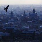A bird flies over the city in Srinagar, India. <span class=