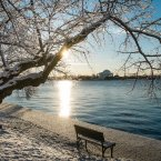 A light dusting of snow and ice from an overnight storm covers the cherry trees around the Tidal Basin near the Jefferson Memorial in Washington.<span class=