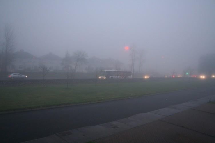 Horror Movie Fog Is Terrifying People Around Ireland The Daily Edge