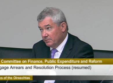 Richie Boucher at the Finance Committee yesterday
