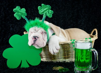 Open Thread How Do We Feel About A Sober St Patricks Day