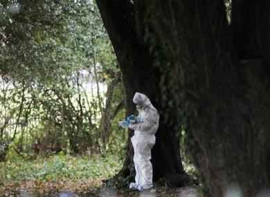 An investigator at the scene of the killing in November 2013.