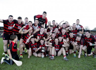 Ballygunner's players celebrate their victory at Walsh Park.