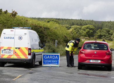 Patricia O'Connor's remains were found scattered around the Dublin/Wicklow mountains.